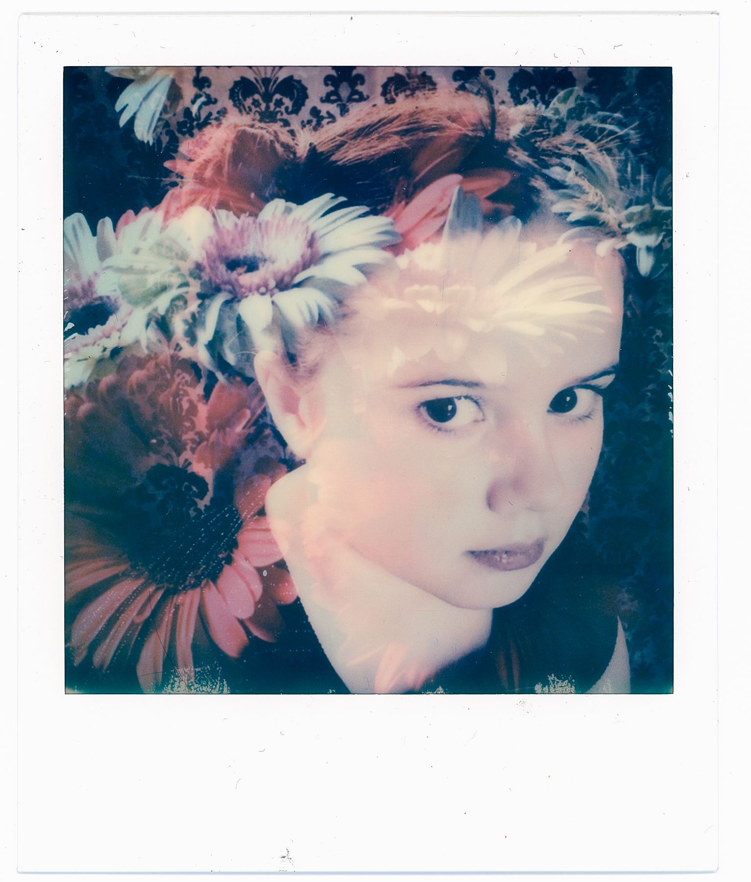 I Am No Bird | Impossible Instant Lab | Impossible Color | Ruby Falls