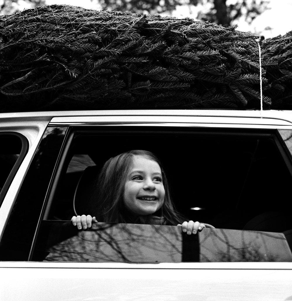 Bringing+Home+the+Tree_Hasselblad+500+CM_Ellen+Goodman+(2).jpg