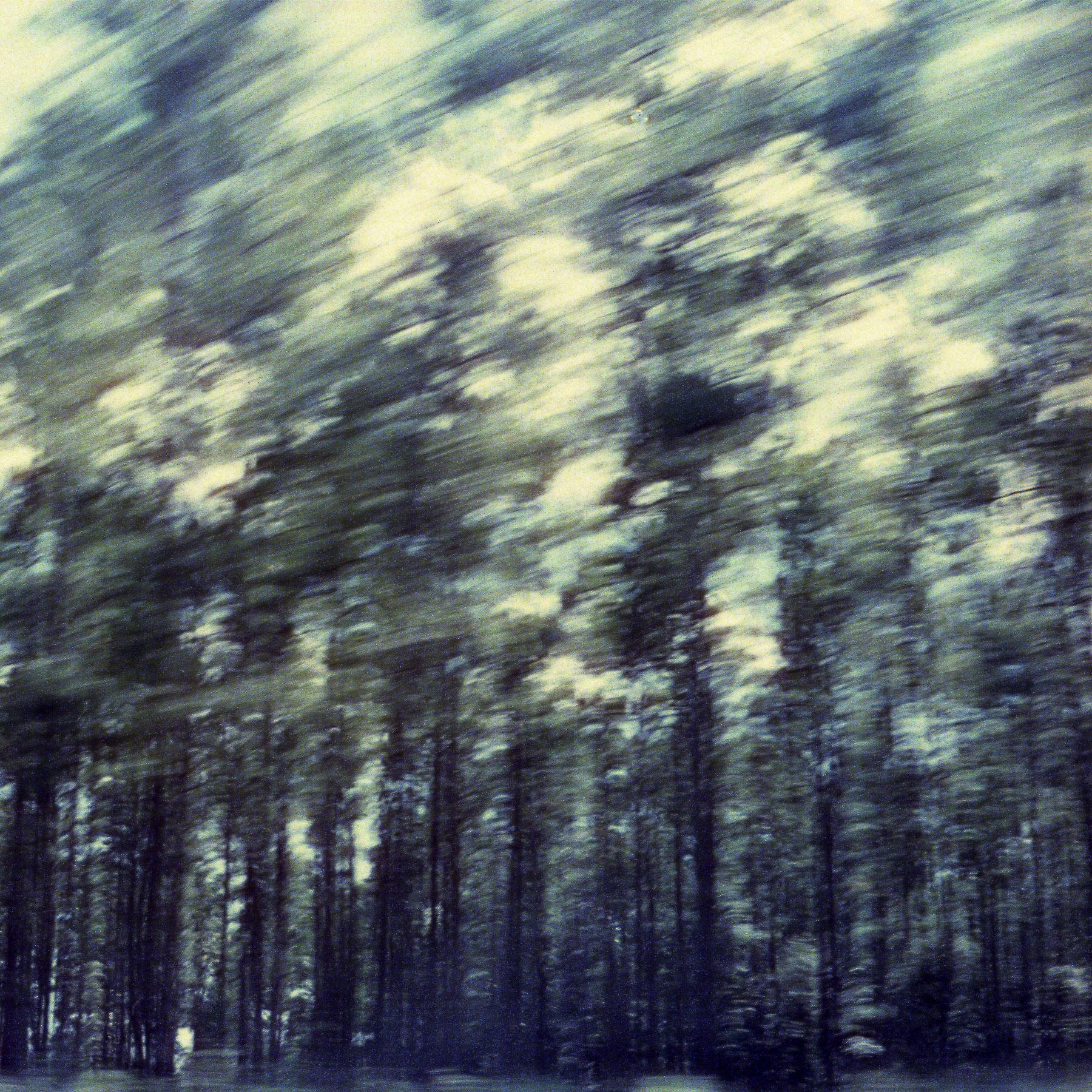 Ruby Berry | Flight | Leicaflex SL | Cinestill 800