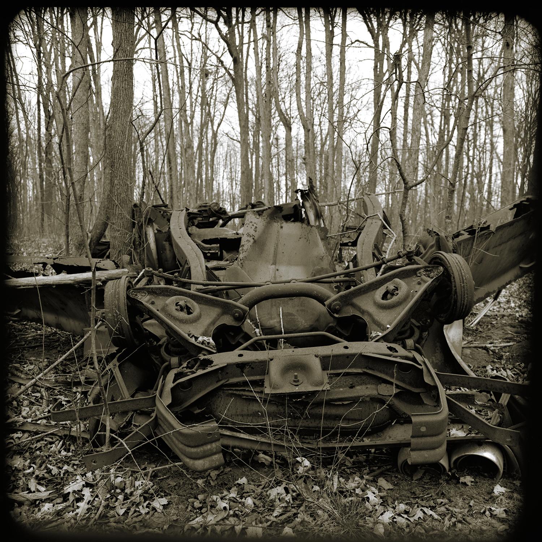 Dead Beast   Bronica SQ-A   50mm   Acros   Howard Sandler
