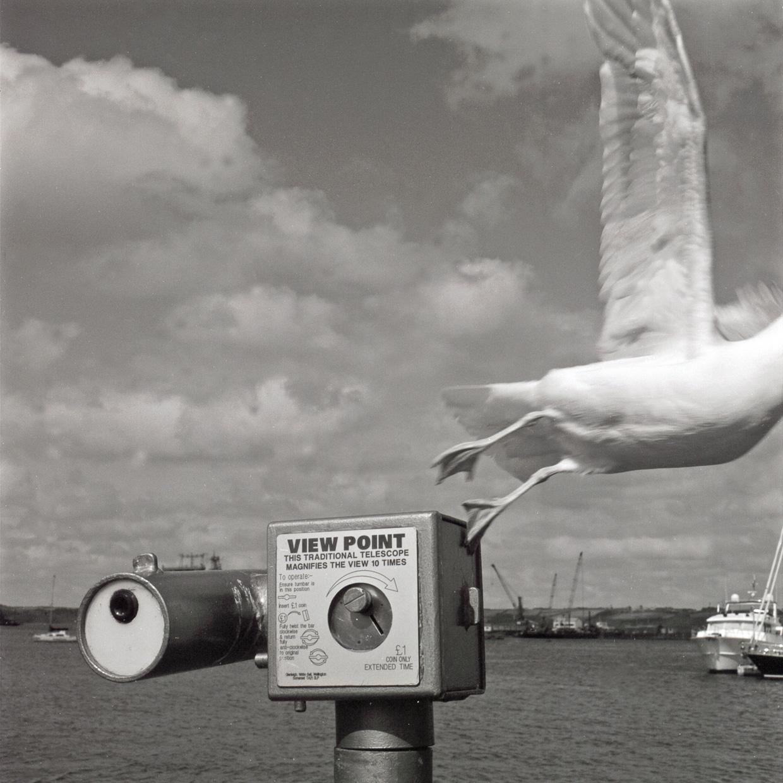 Untitled   Hasselblad   Roger Harrison