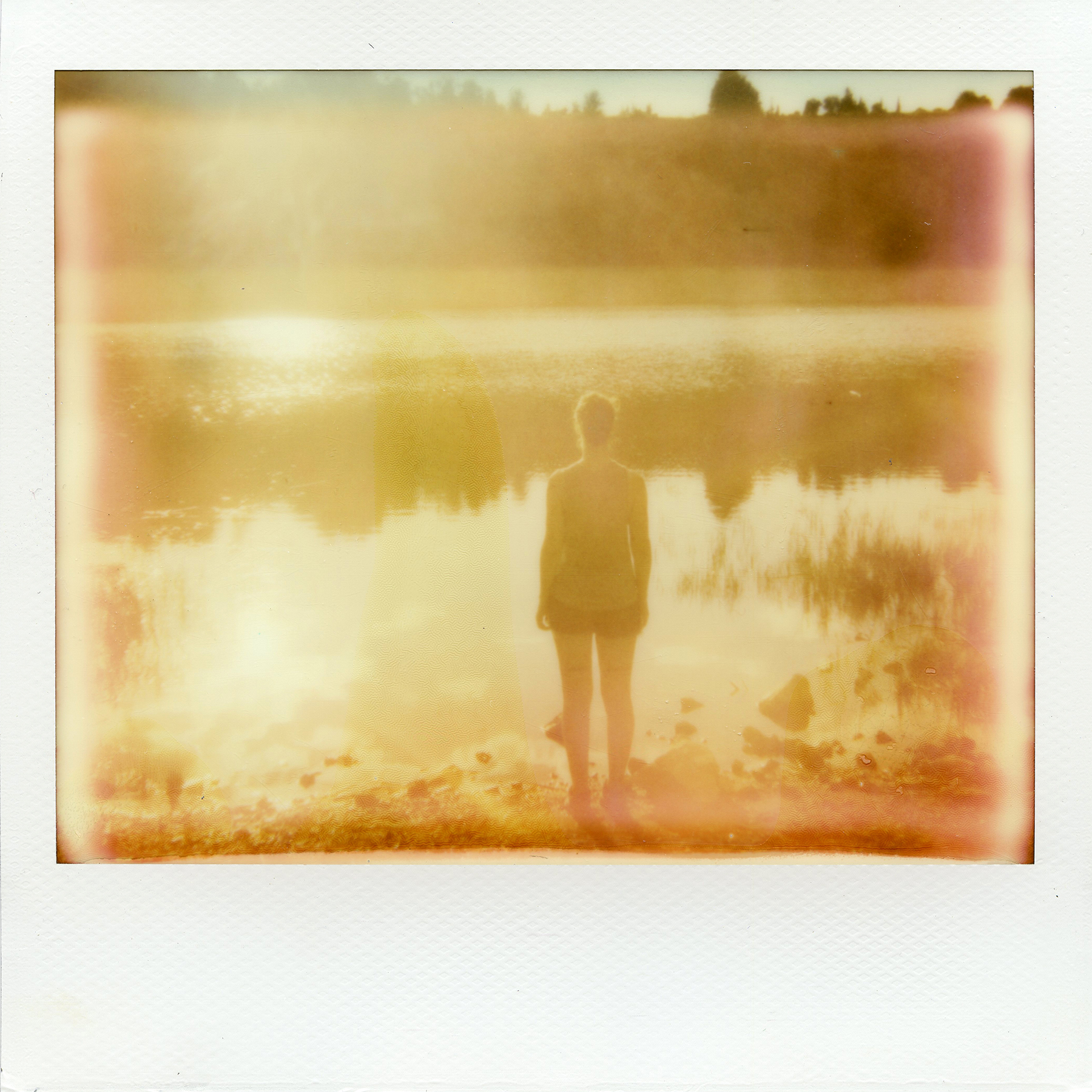 Untitled | Spectra | Impossible Project Spectra Color | La Fille Renne