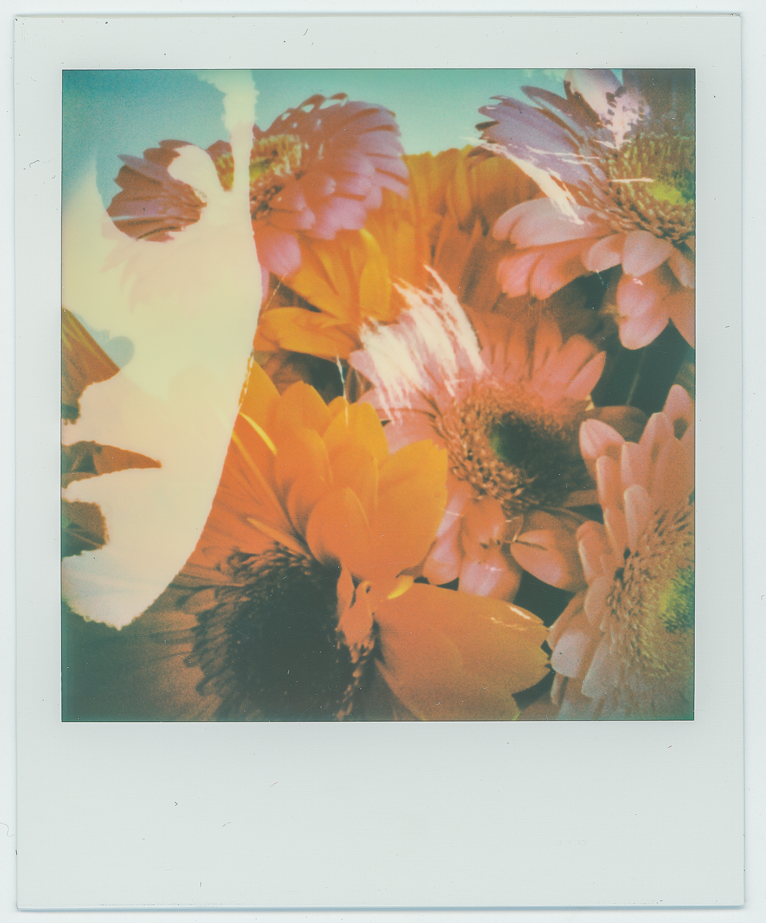 Ruby | When Everything Is New Again | Impossible Project Beta 3
