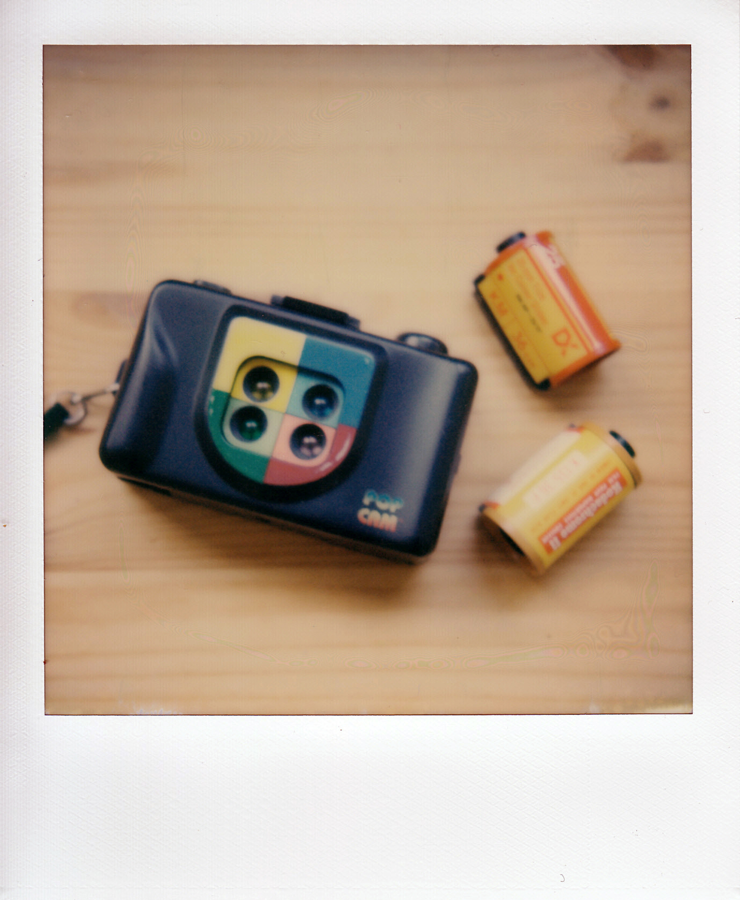 Untitled | Polaroid SX70 | Impossible Color | La Fille Renne