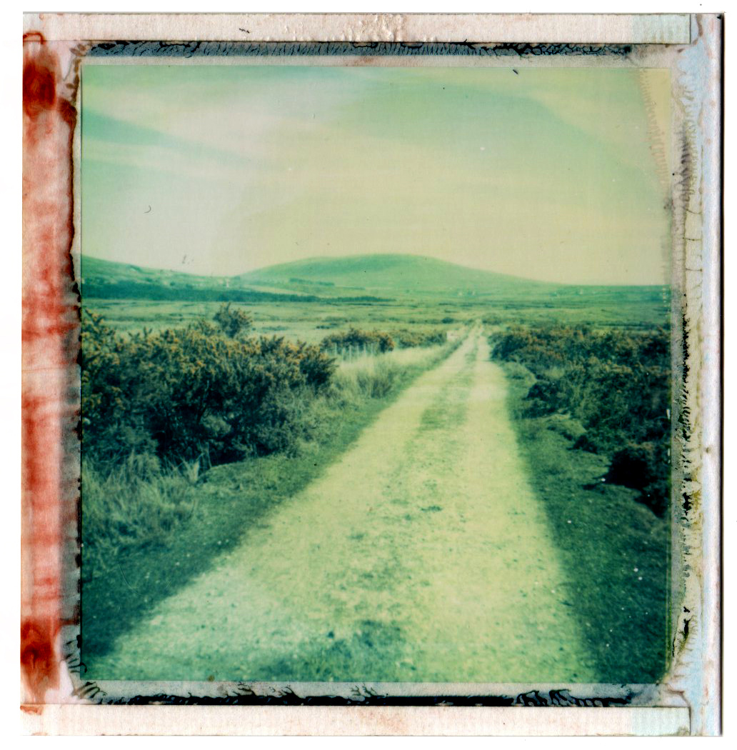 Bog Road | Polaroid Super Color Swinger | PolaColor 88 Film | Franics Van Maele