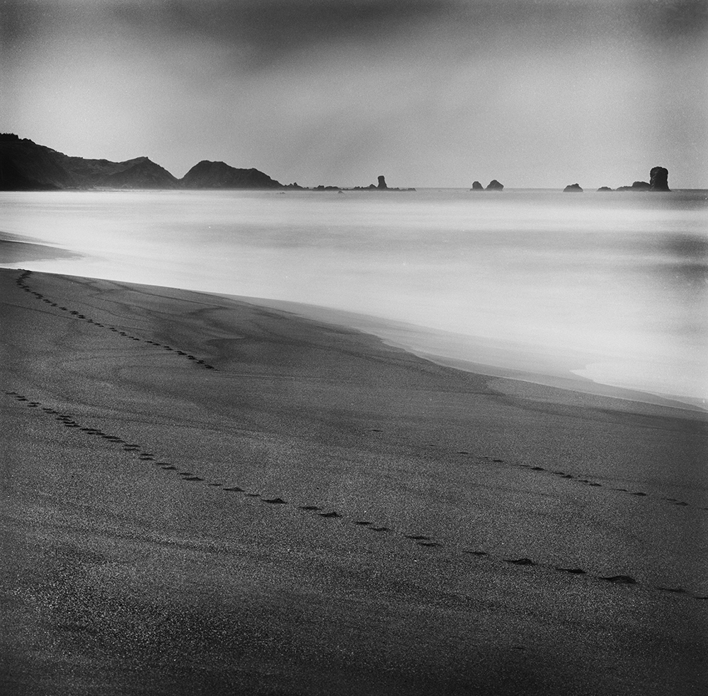 Untitled | Hasselblad 500C | Zeb Andrews