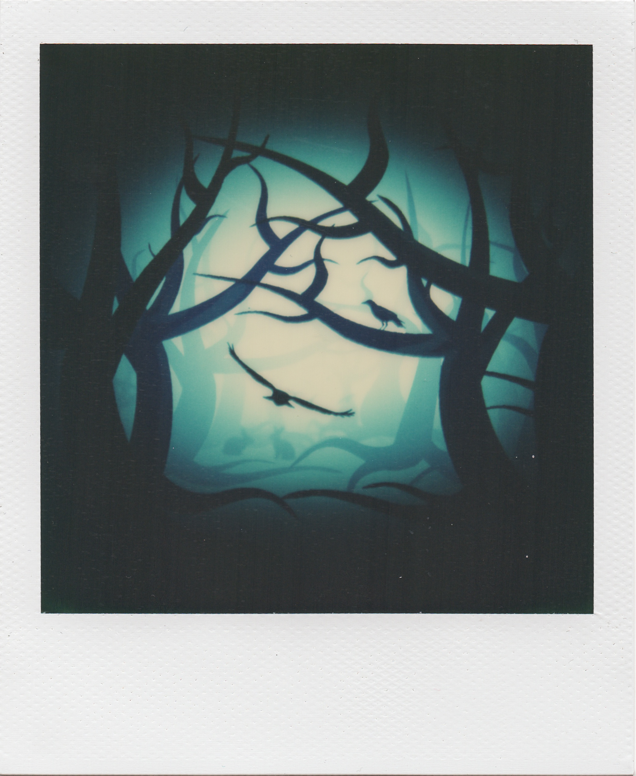 Instant Dream | Polaroid SX70 | Impossible Project Factory Seconds 70 Color Film | One Photograph Found In A Dream | Karin Claus