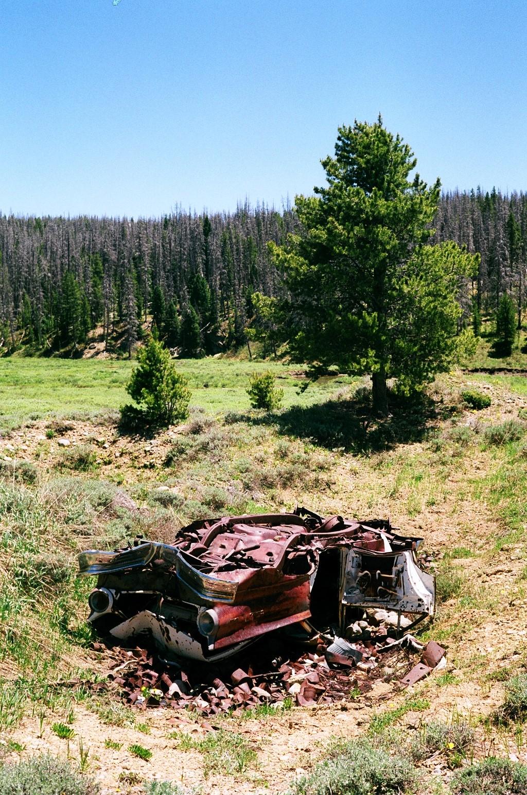 Jake Leininger | Trash in the Green | Canonet GIII | Afga 200