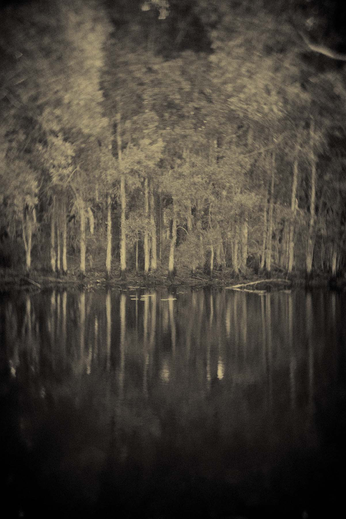 blackwater park | Nikon FTN | Shahram Zadgan