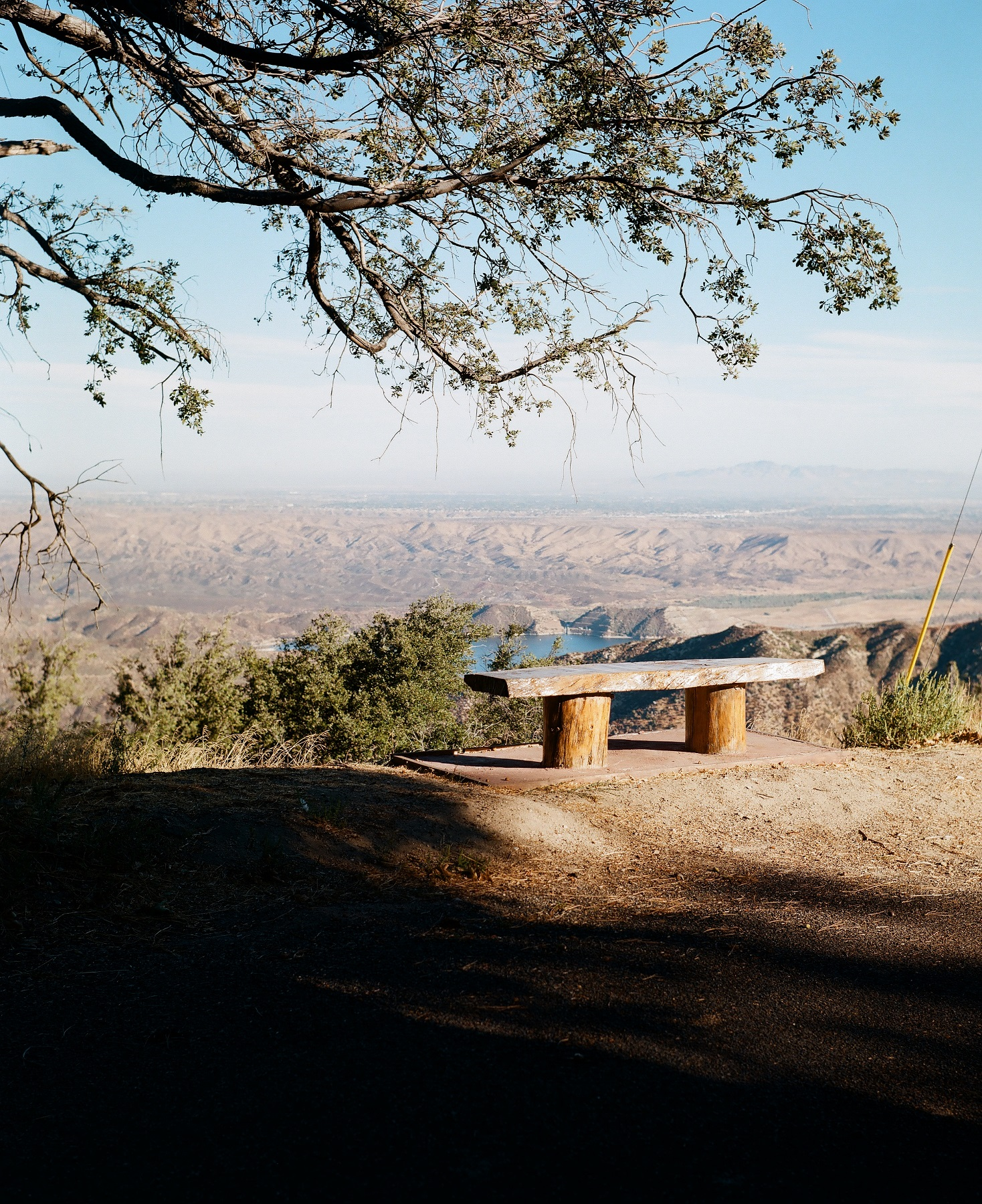 Crestline, California_Mamiya Super 23, 3.5f=100m_Kyle Everett Smith_6.jpg