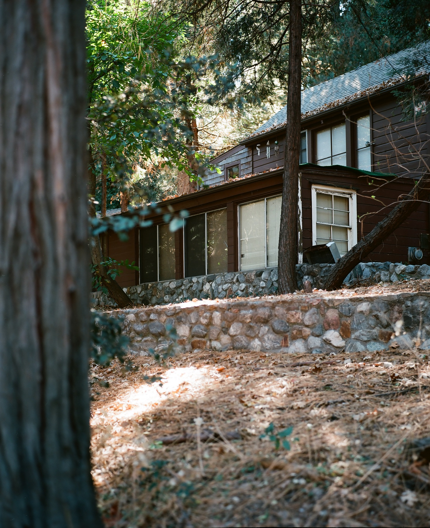 Crestline, California_Mamiya Super 23, 3.5f=100m_Kyle Everett Smith_15.jpg