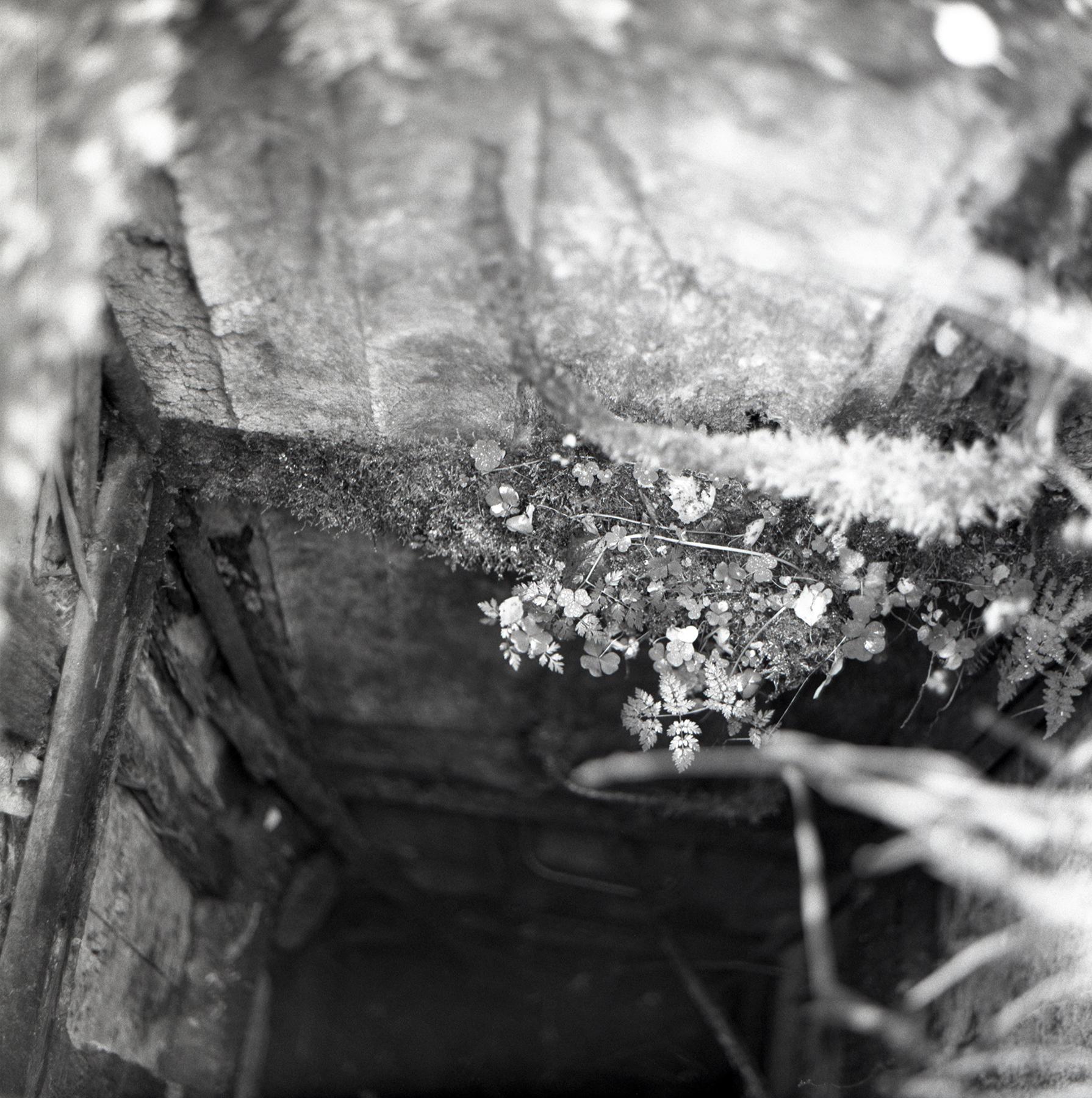 Bunker | Kiev88 and Vega 12B | Max Makovetskiy