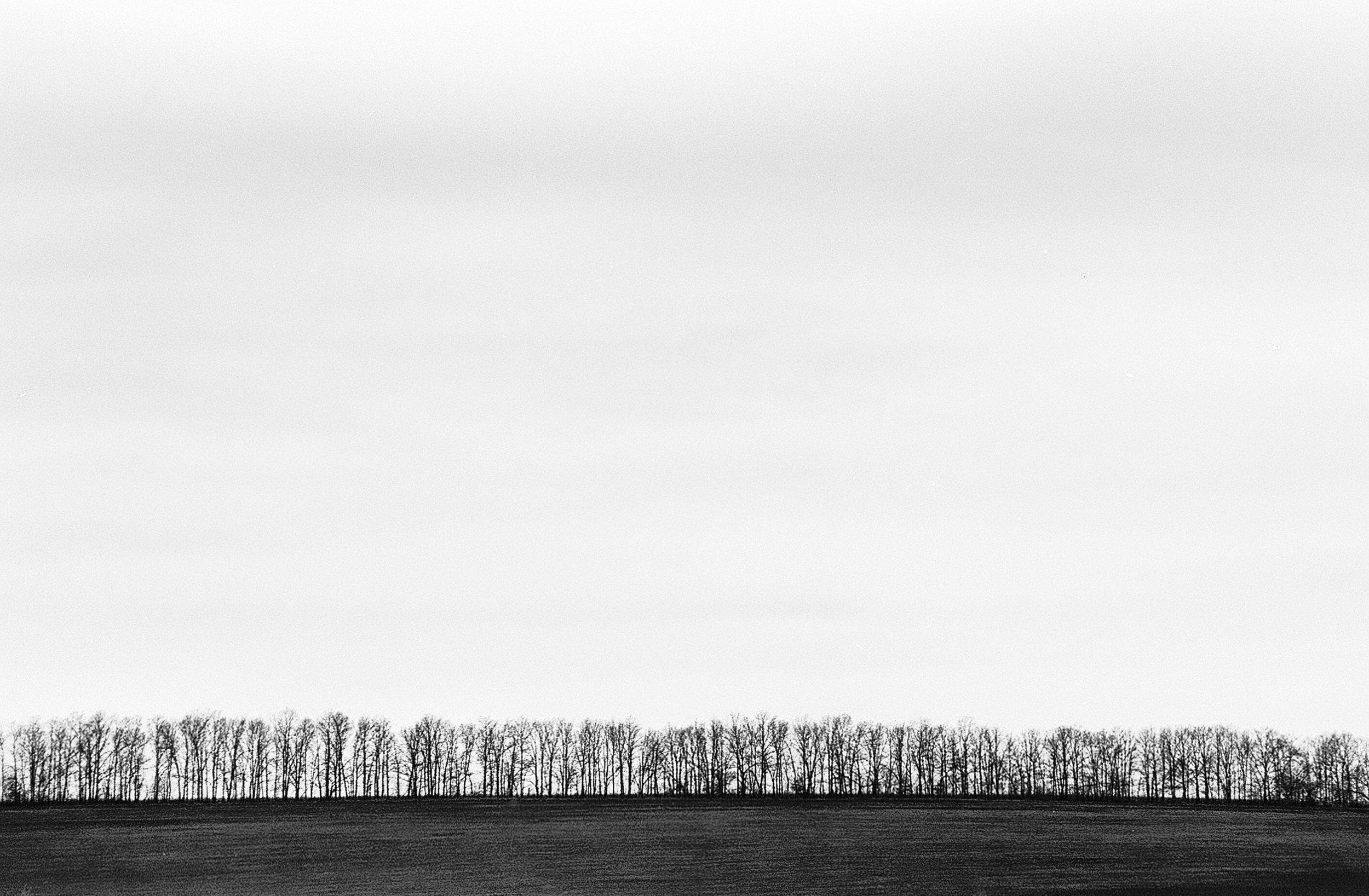 Untitled | Gleb Myalik