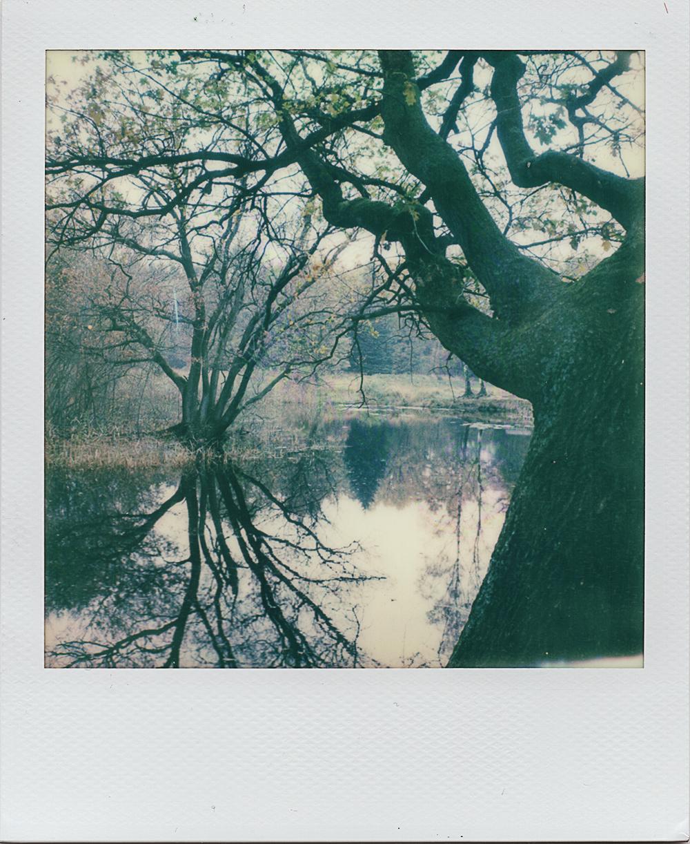 Hold On | Polaroid 680AF | PO 600 Film | Karin Klaus