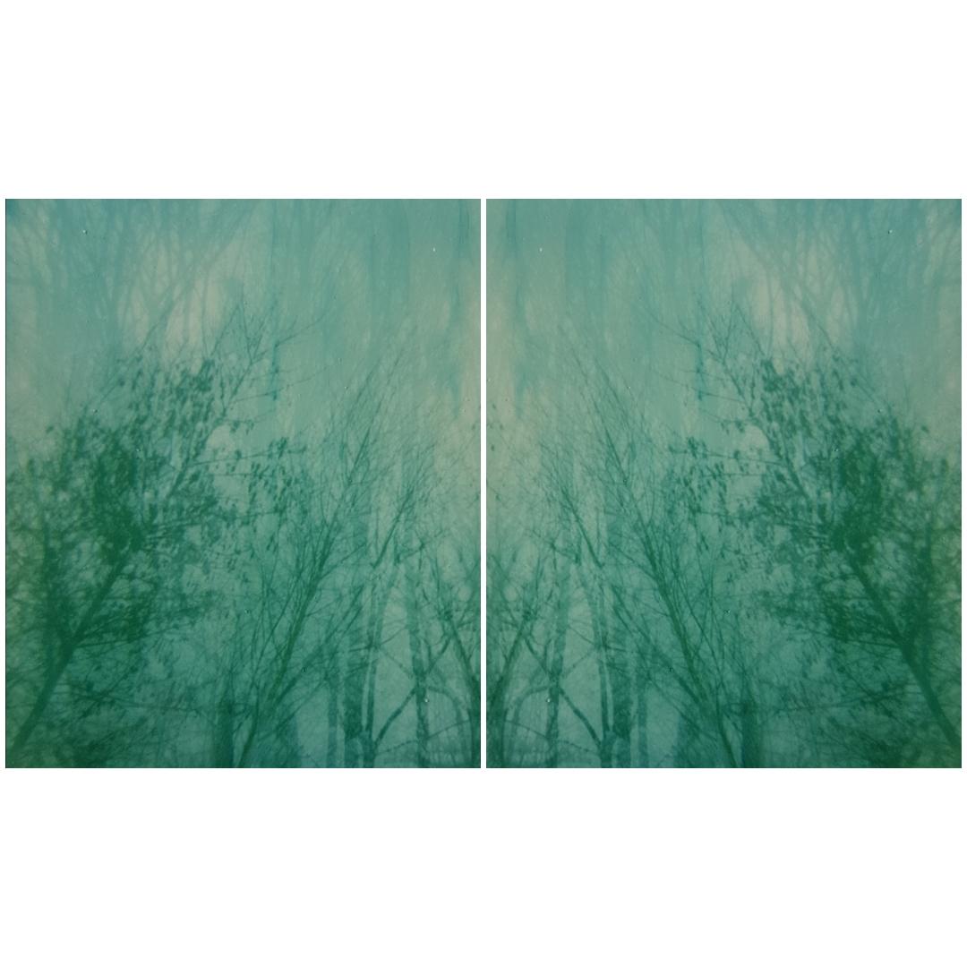 Untitled | Polaroid Originals Spectra Color | Amanda Pendlebury
