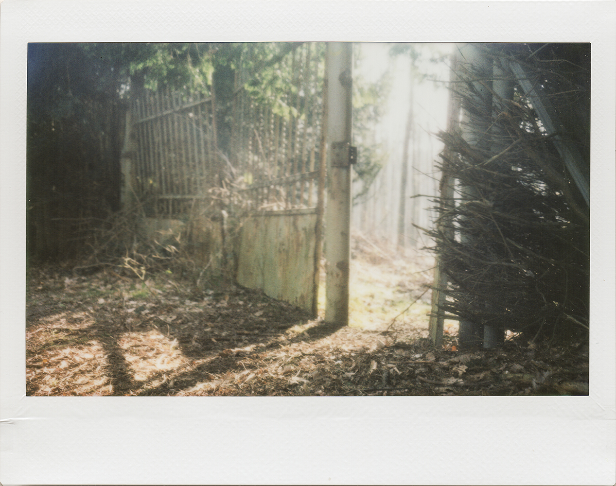 The Gate | Polaroid Automatic 250 | Fuji Instax Wide | Karin Claus