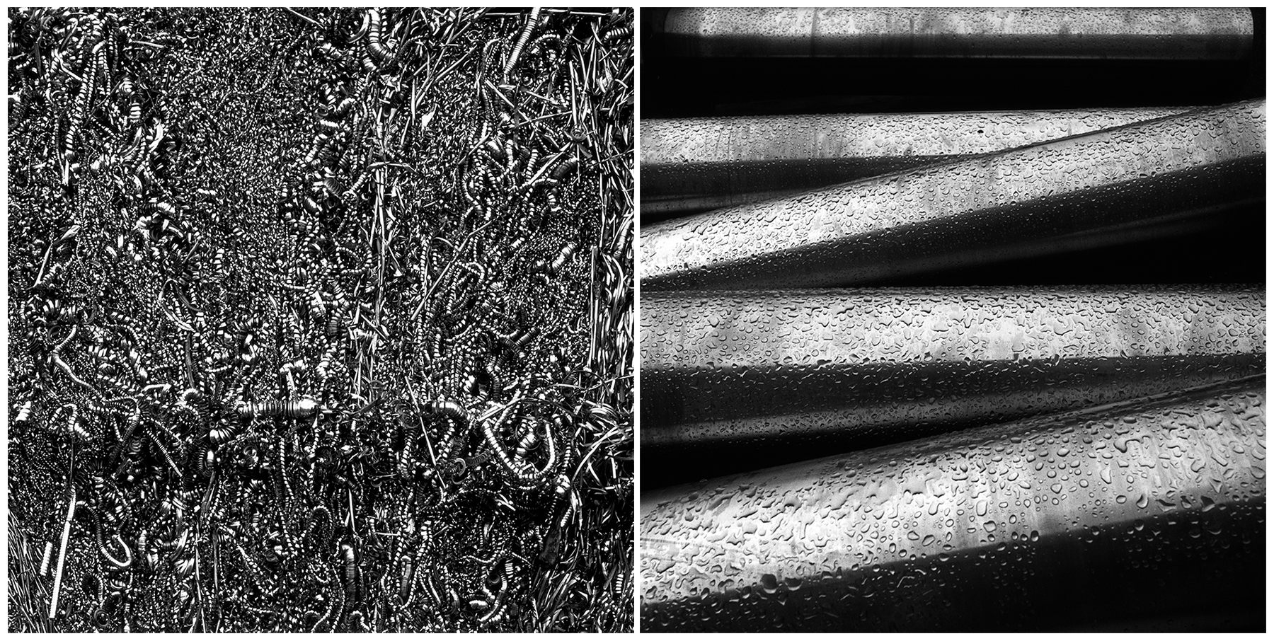 Titanium | Rolleiflex | Ektachrome EPL | Danny Lennox Bronson