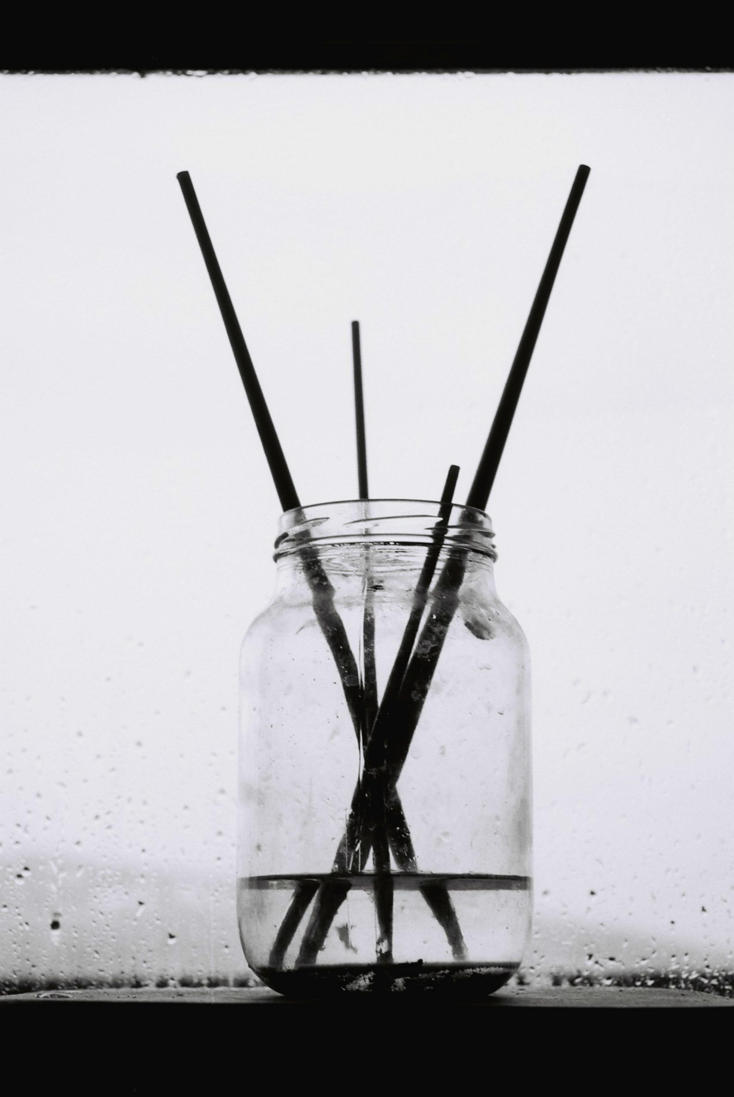 Brushes | Nikon F90 | Kodak T-Max 100 | Zurab Chachanidze