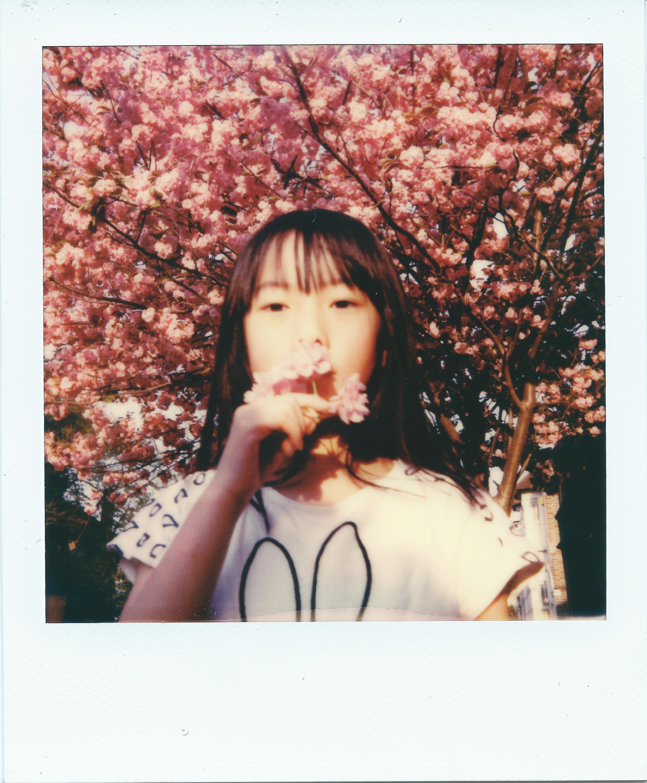 Elena Blossom | OneStep2 | PO IType | Ray Liu