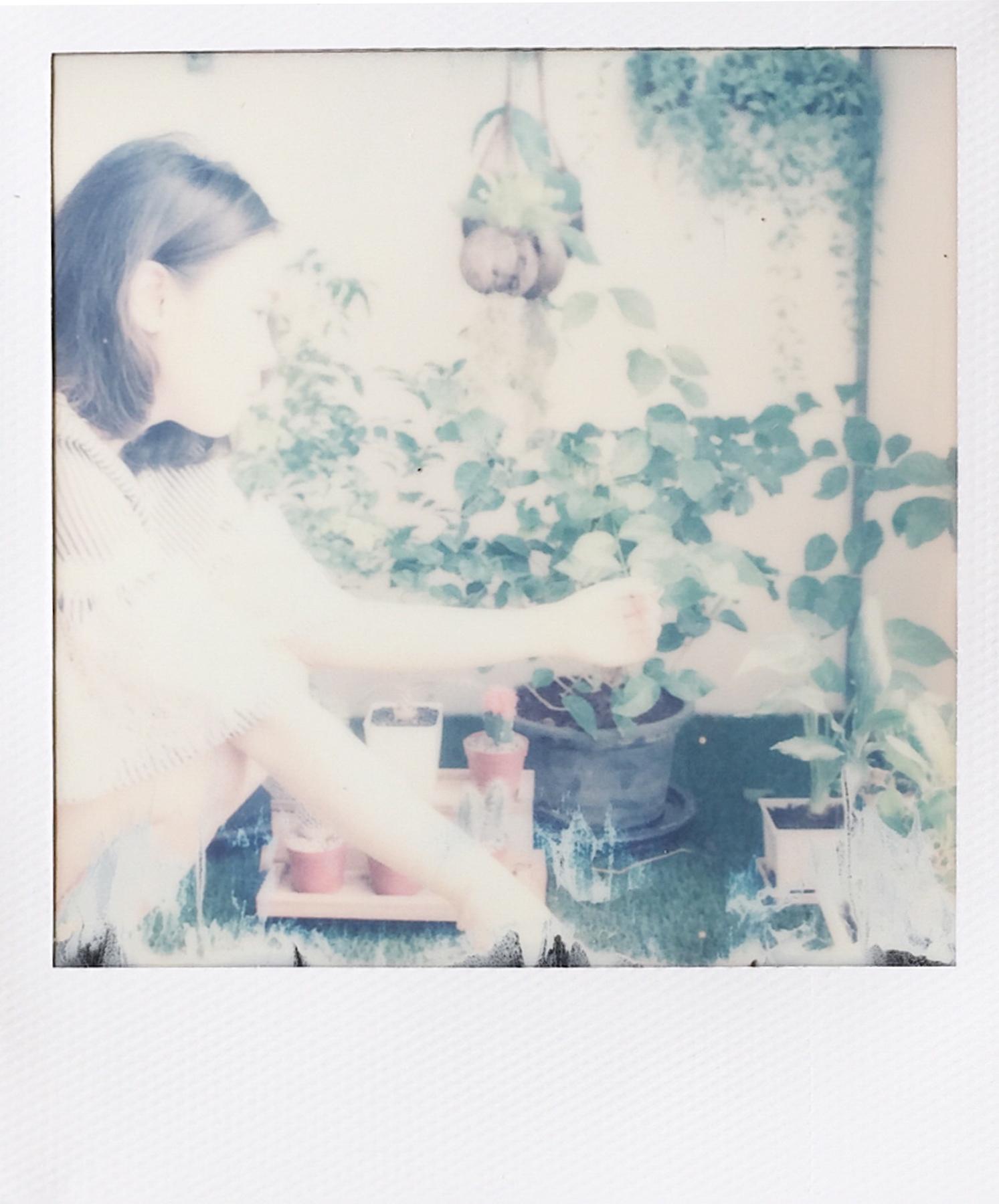 Garden | SX-70 | Sorana Kaewmaneechai