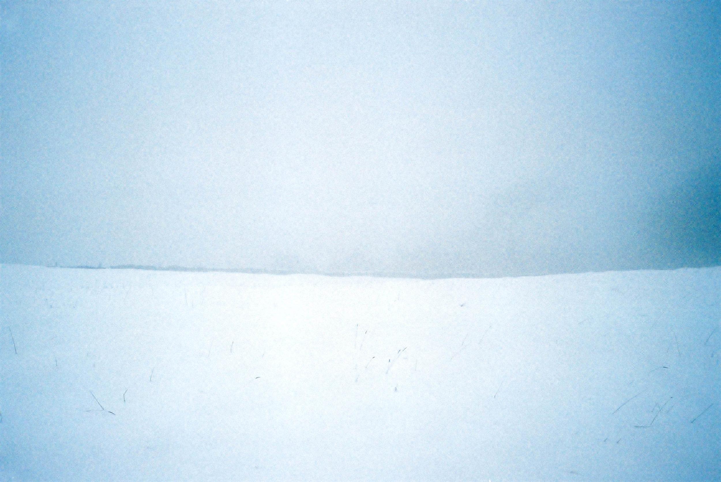 Lucy Wainwright | Untitled | Olympus Trip | Fuji Superia 200