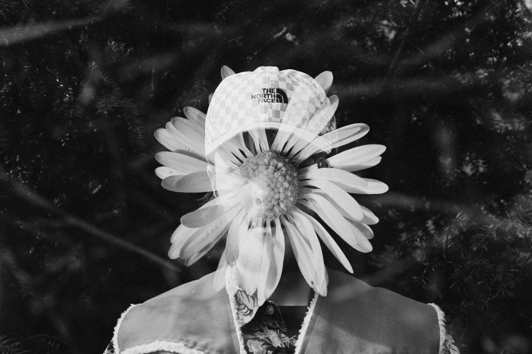 Daisy | Nkon FE | Joshua Elliot Cole