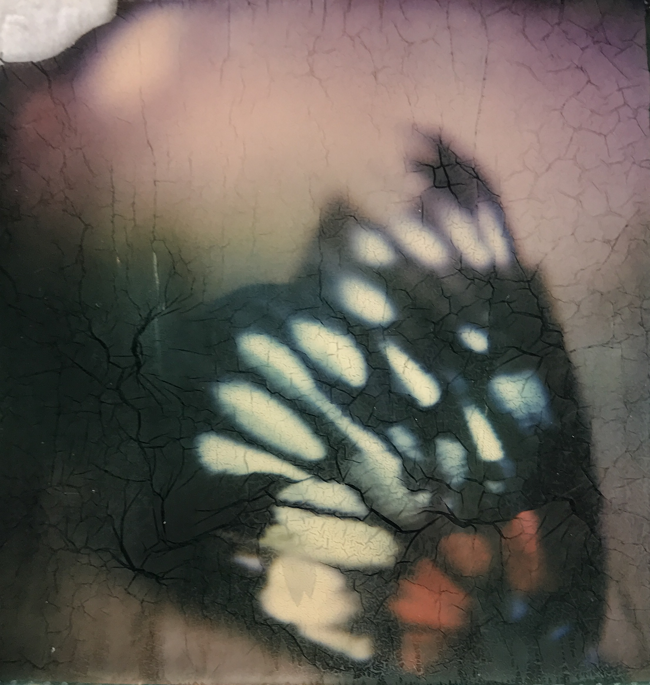 Untitled | MiNT SLR670  Polaroid Originals Color 600  Kin Ming Chan