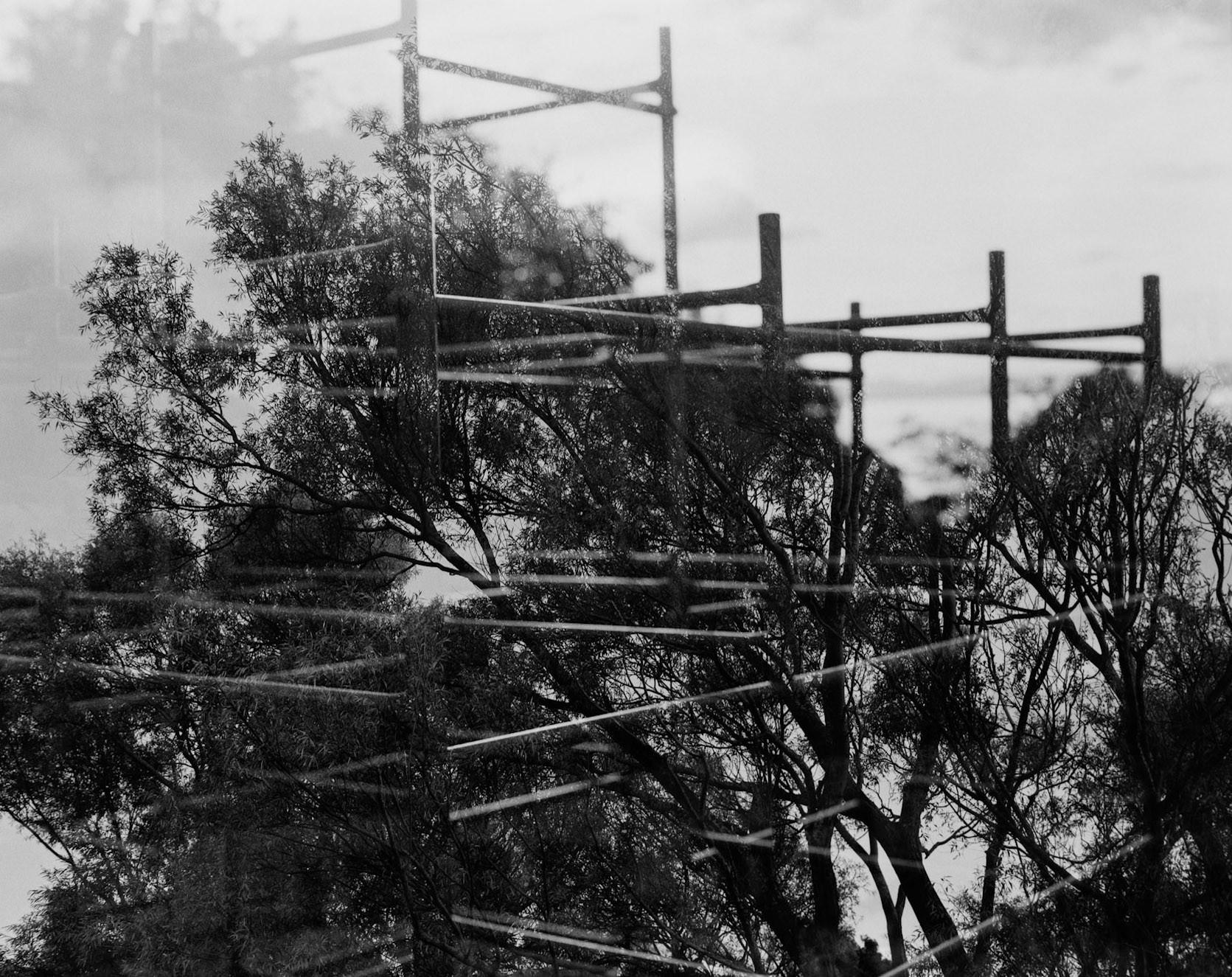 Climb Everything | Mamiya RB67 | 90mm | Michael Rennie
