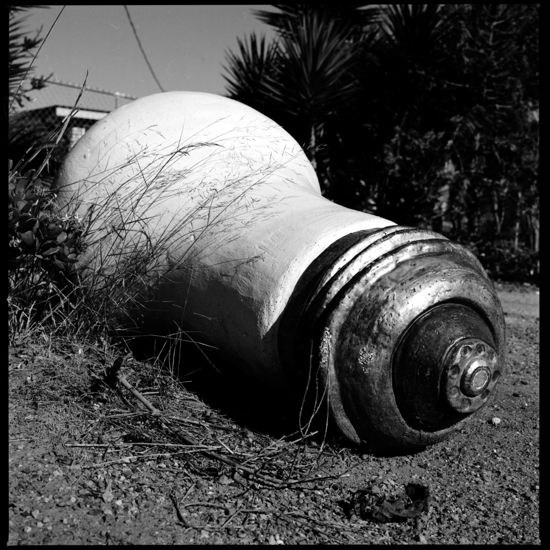Big Idea Abandoned | Hasselblad 500cm | 80mm | ACROS 100 | Russ Morris