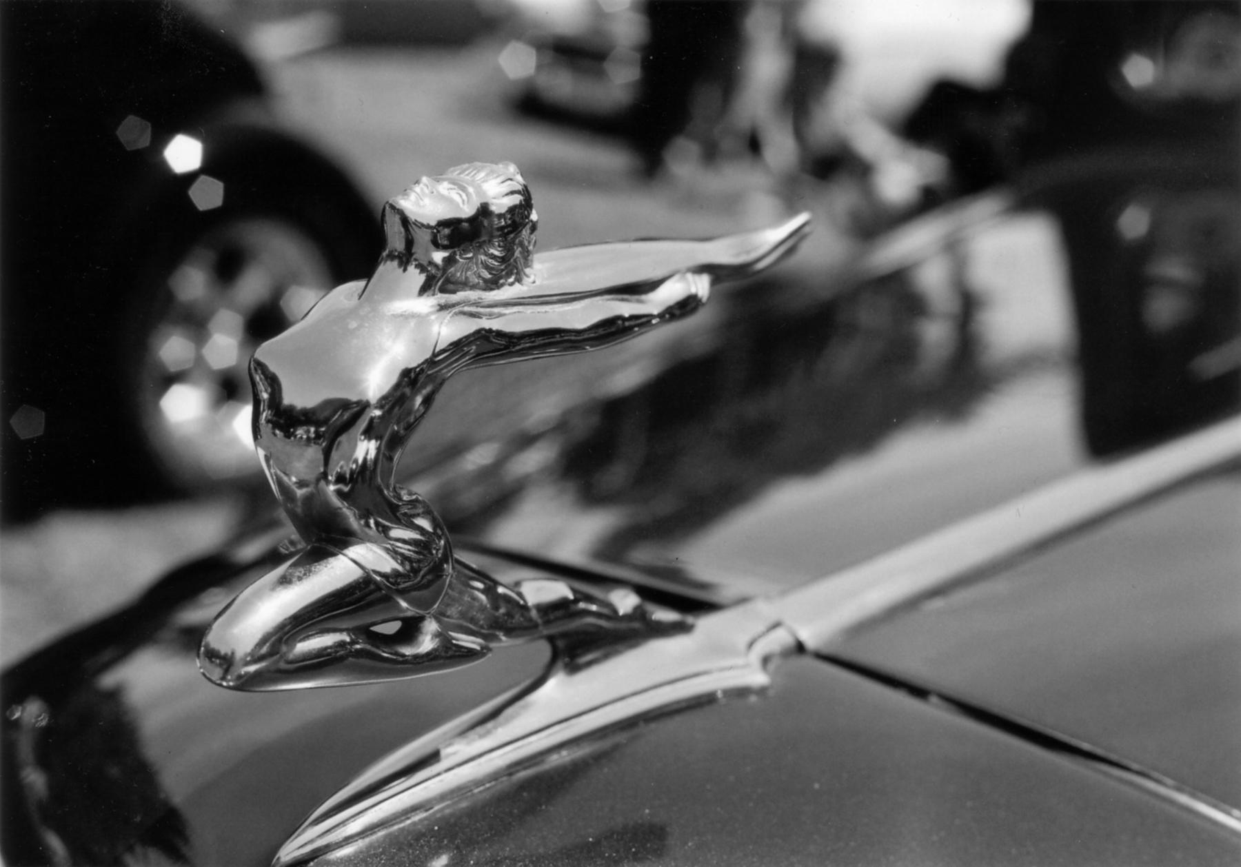 One classy hoody | Canon Rebel T2 | Canon EF 50mm ƒ1.8 | Kodak BW400CN