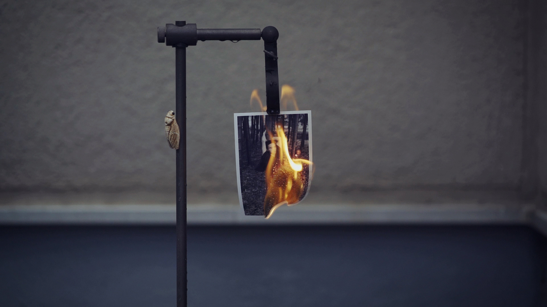 It's A Video Of Burning Prints That Took Some Courage To Do | Tim Gallo