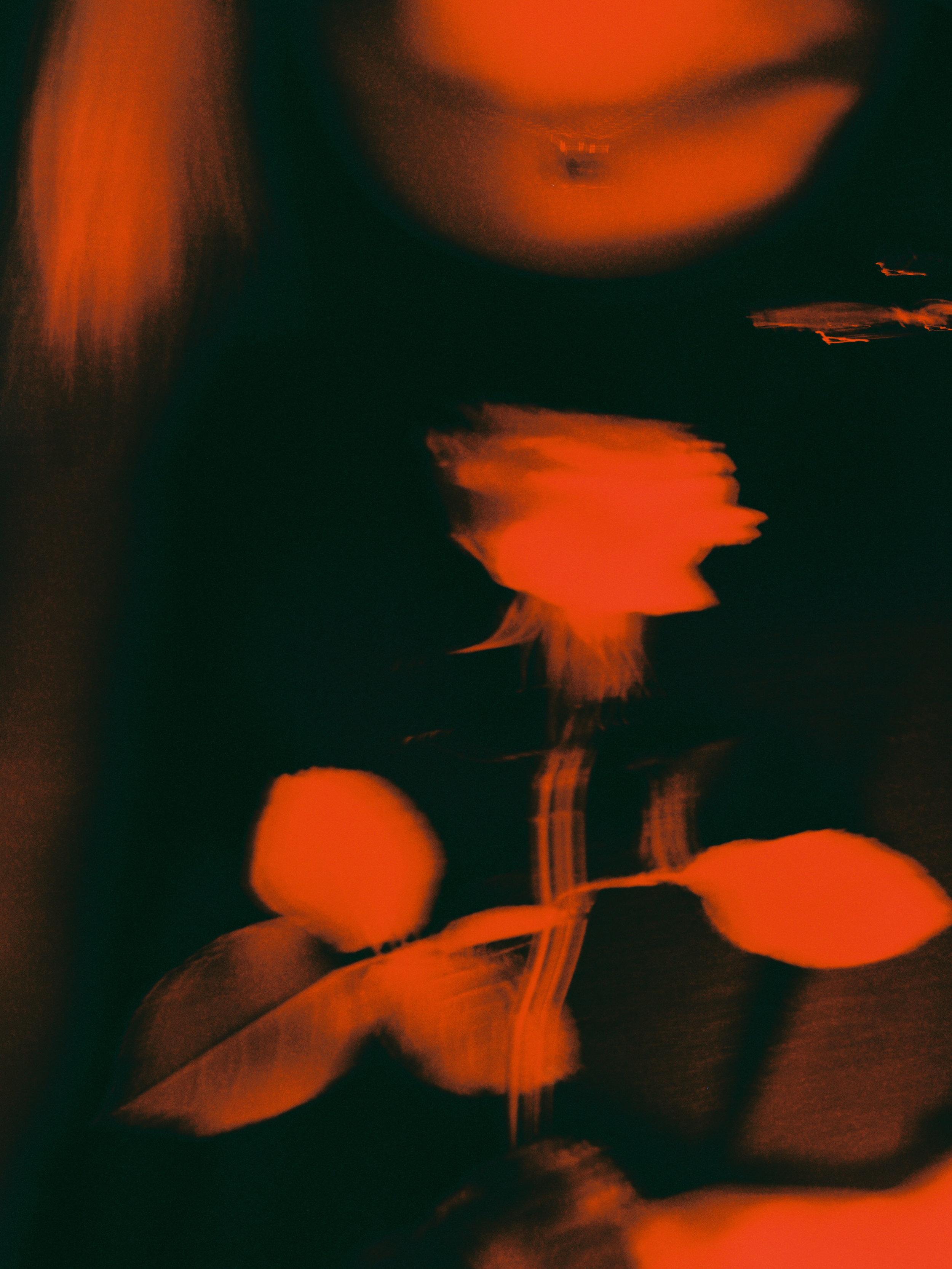 Trent T - Malorie's Flower