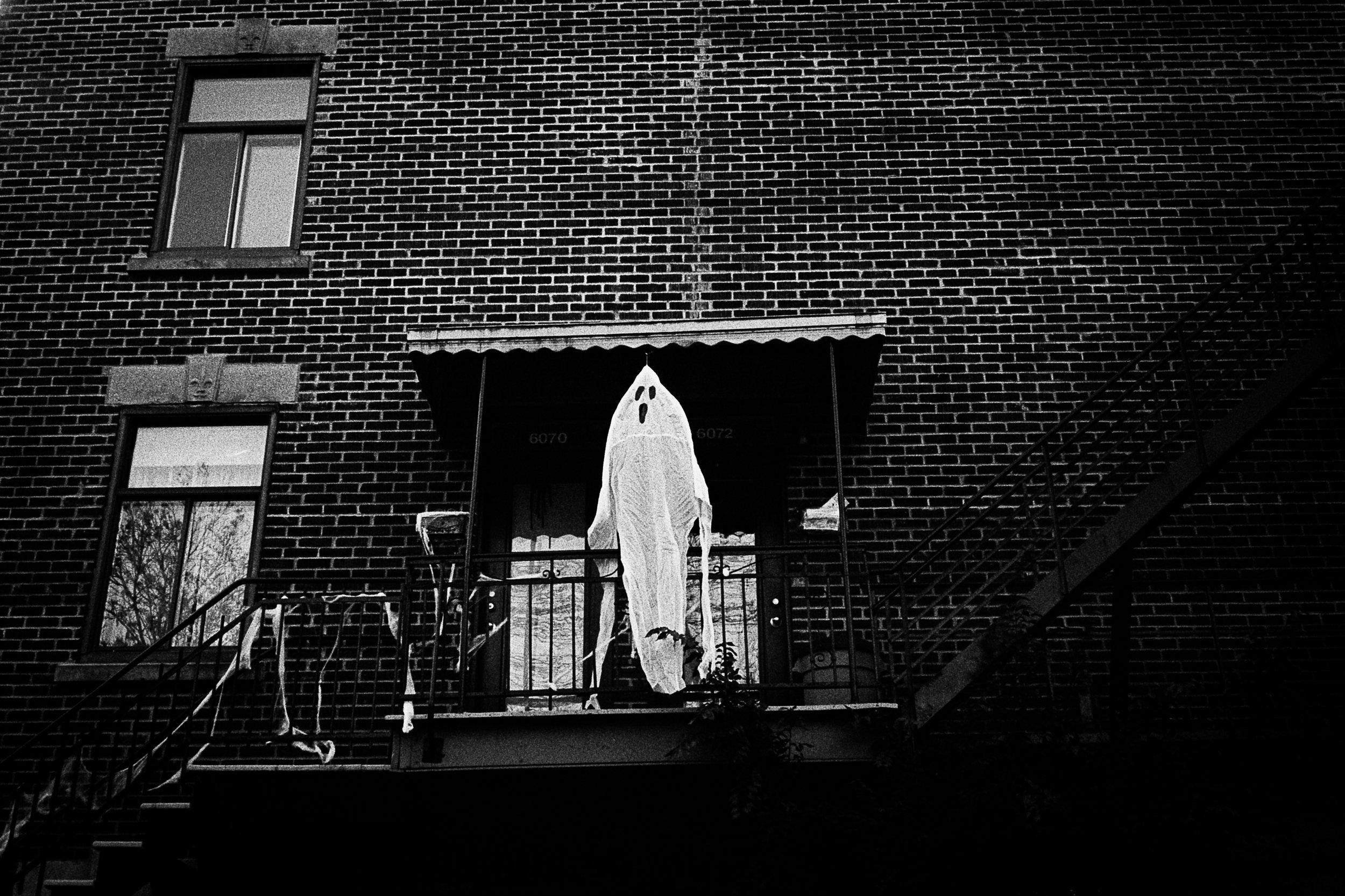 Tom Klauss | Paledays | Leica M5