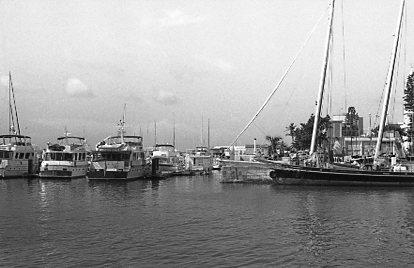 Bermuda021.jpg