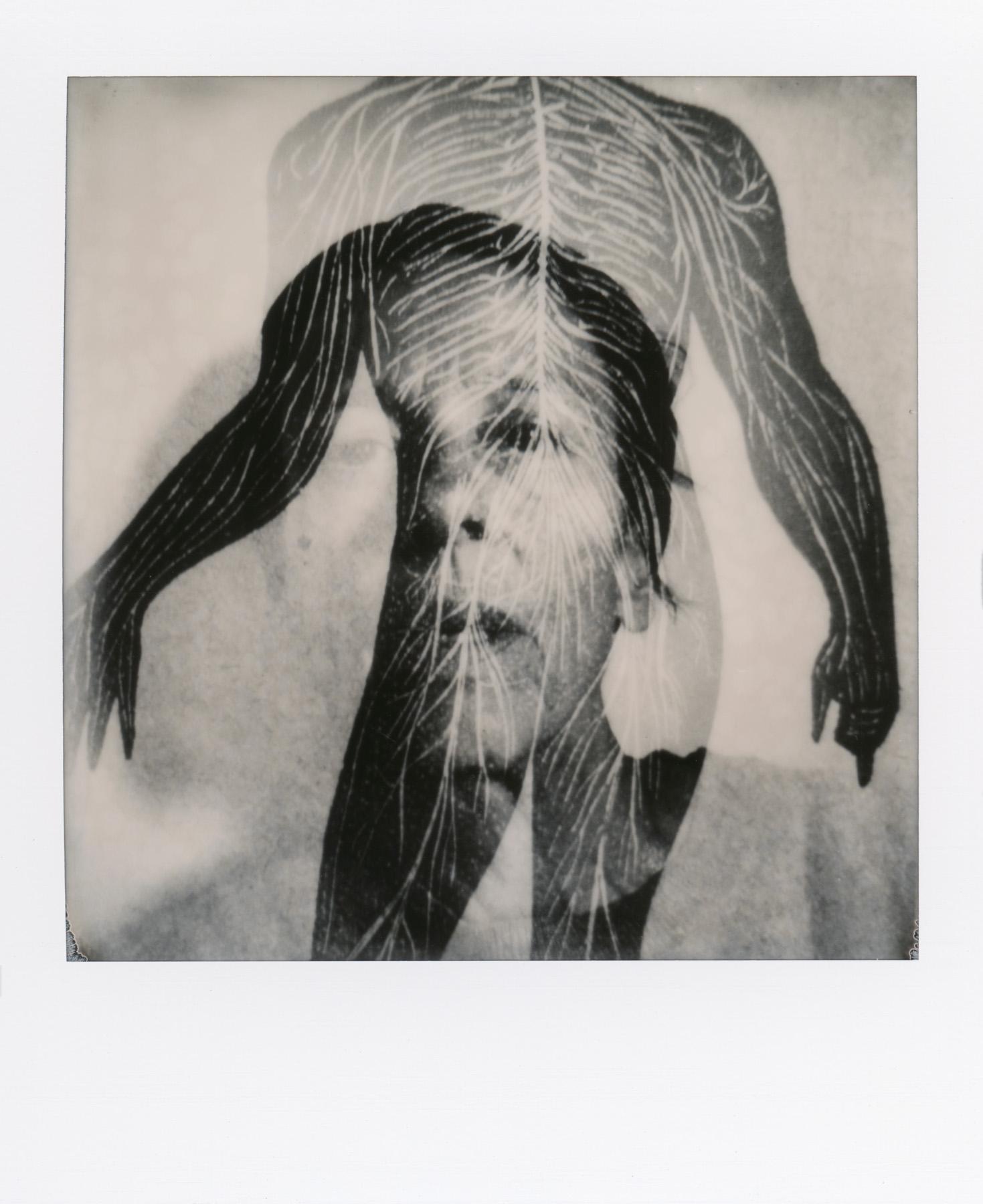 Untitled | SX-70 | Alek Lindus