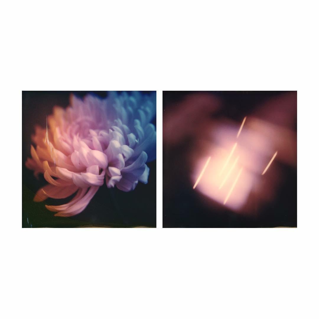 Untitled | Polaroid SX70 | Impossible Color SX70 | Joann Edmonds