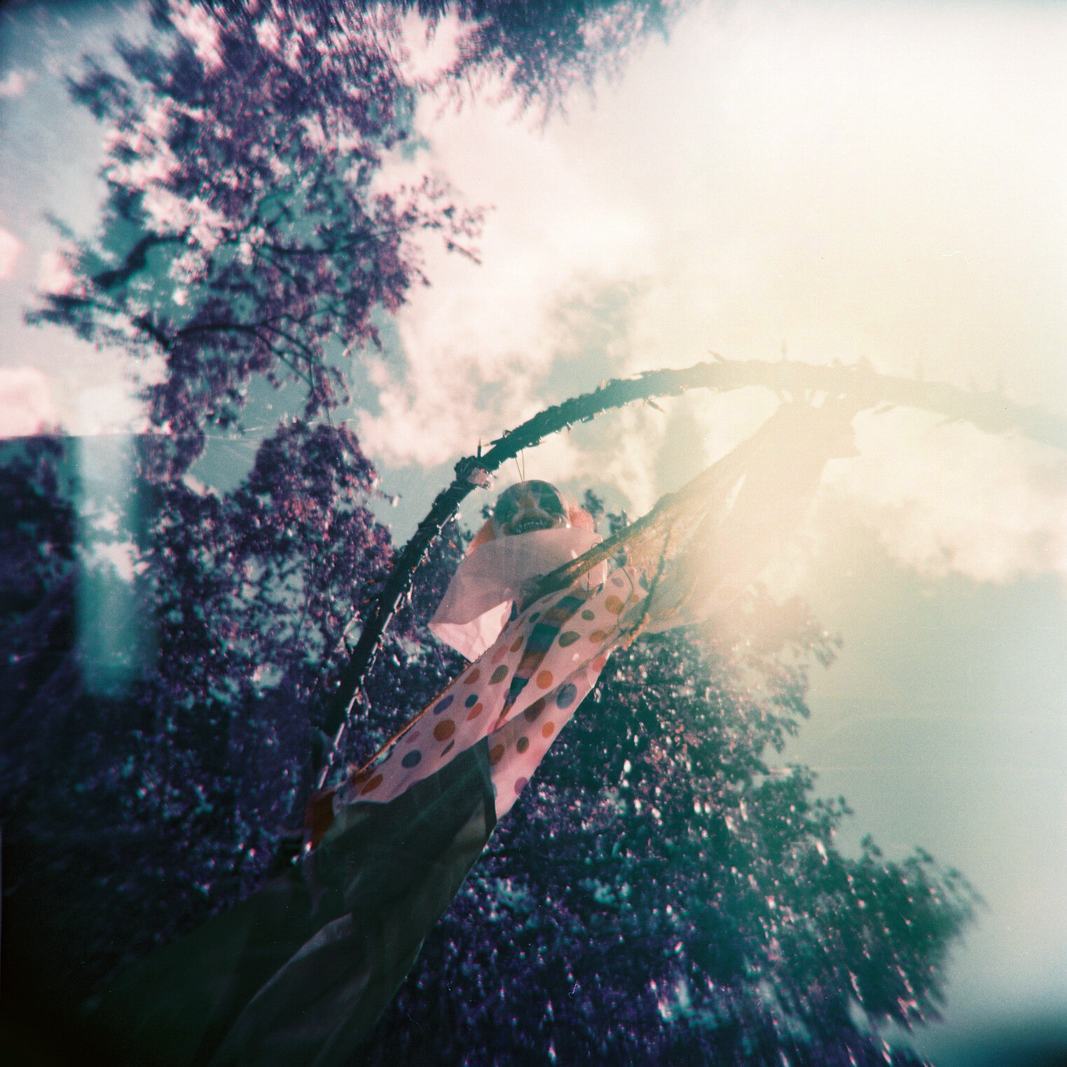 凯蒂·格雷格里(Katie Gregory)-It_Holga120N_KatieMollon.jpg