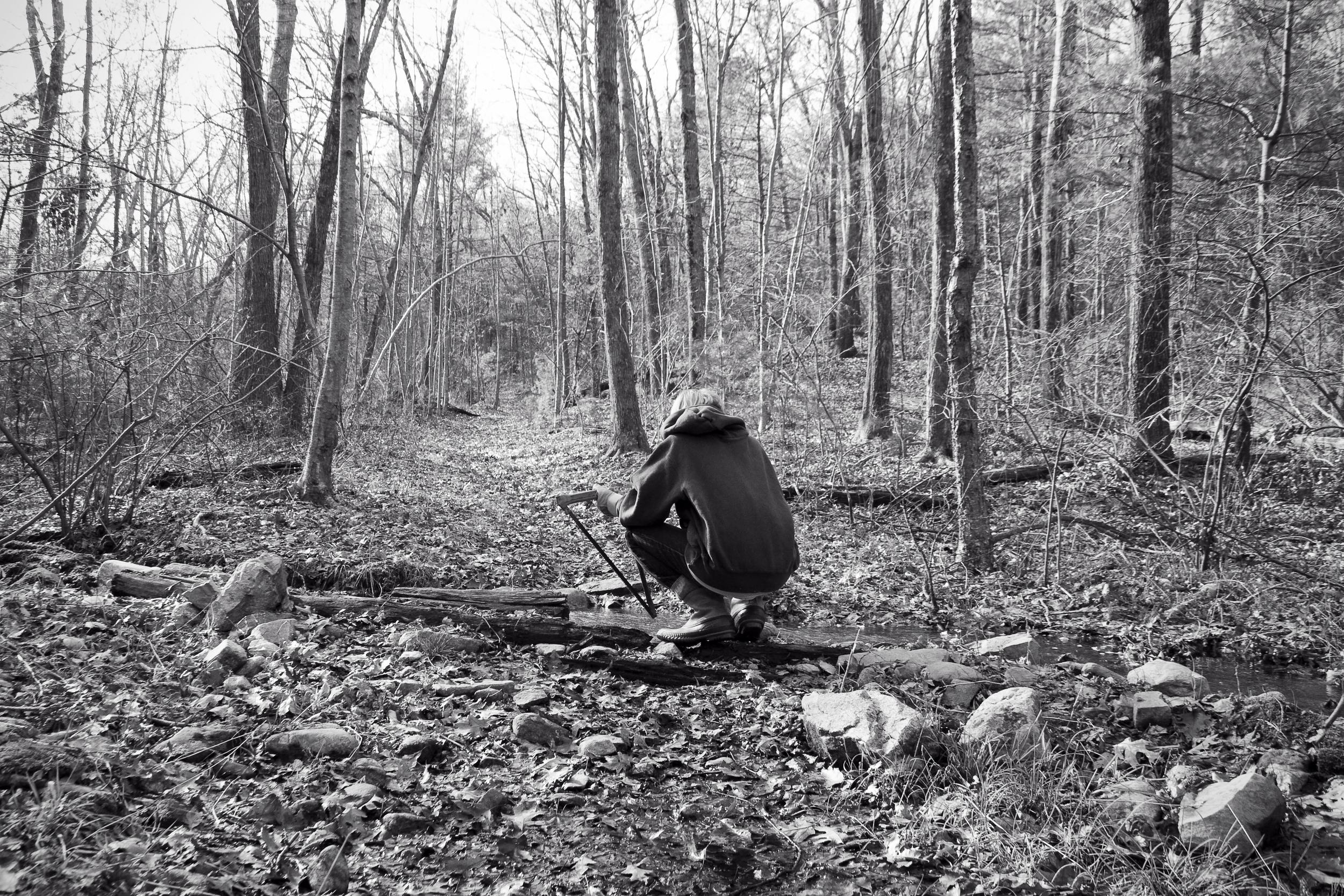 peter_the_lumberjack.jpg