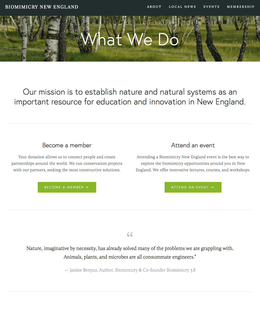 Biomimicry New England (20150405) wide 2.png
