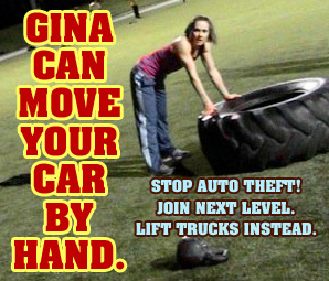 GINA LIFTS CARS.jpg