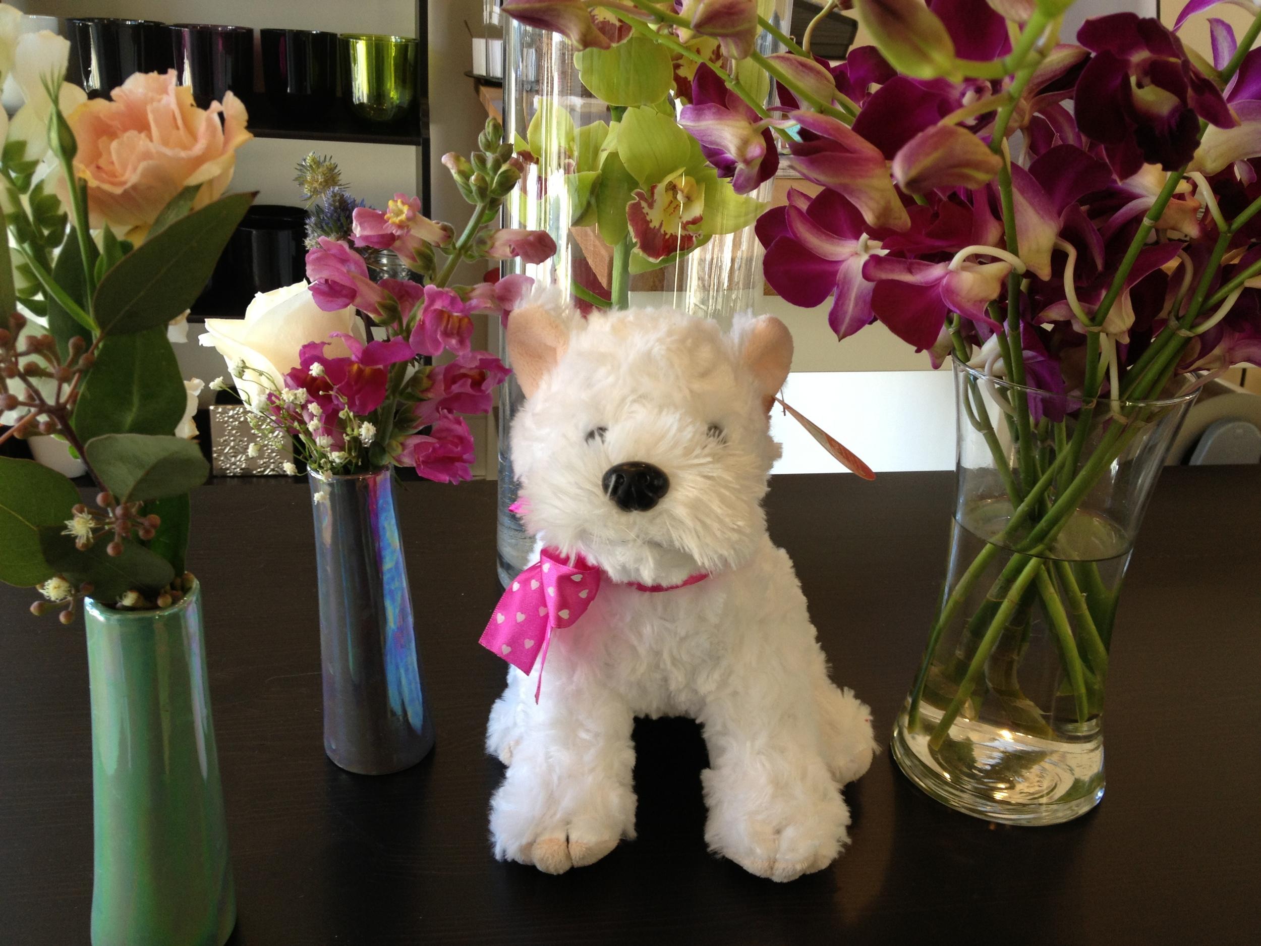 Bloomsbury Westie Pup, $14