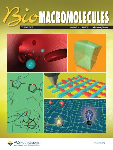 biomacromoleculescover.jpg