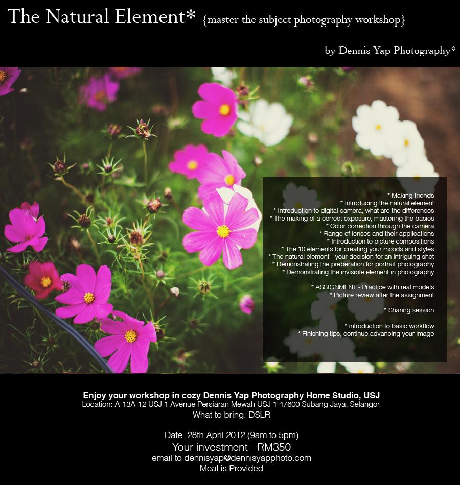 The Natural Element n4.jpg