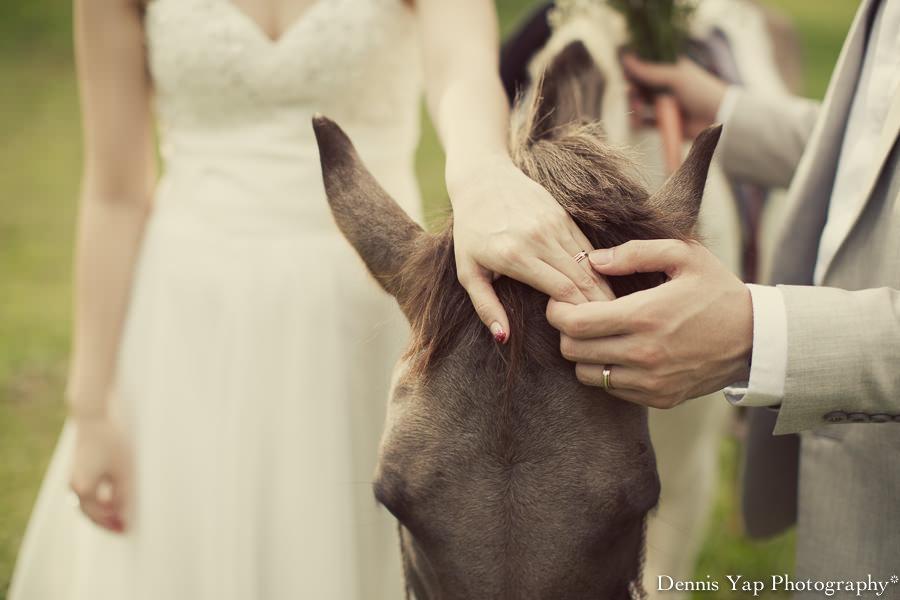yong bin lidya with you eternally pre wedding uk farm johor kluang dennis yap photography lavendar farm goat farm-7.jpg