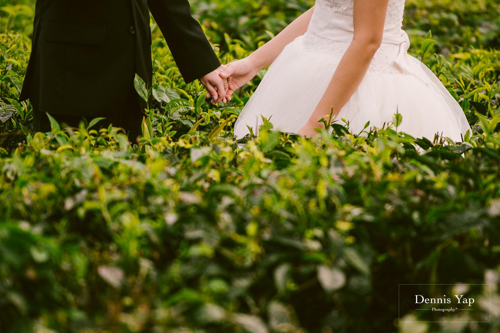chay xiang alicia pre wedding cameron highland smoke house tea plantation dennis yap photography-2.jpg