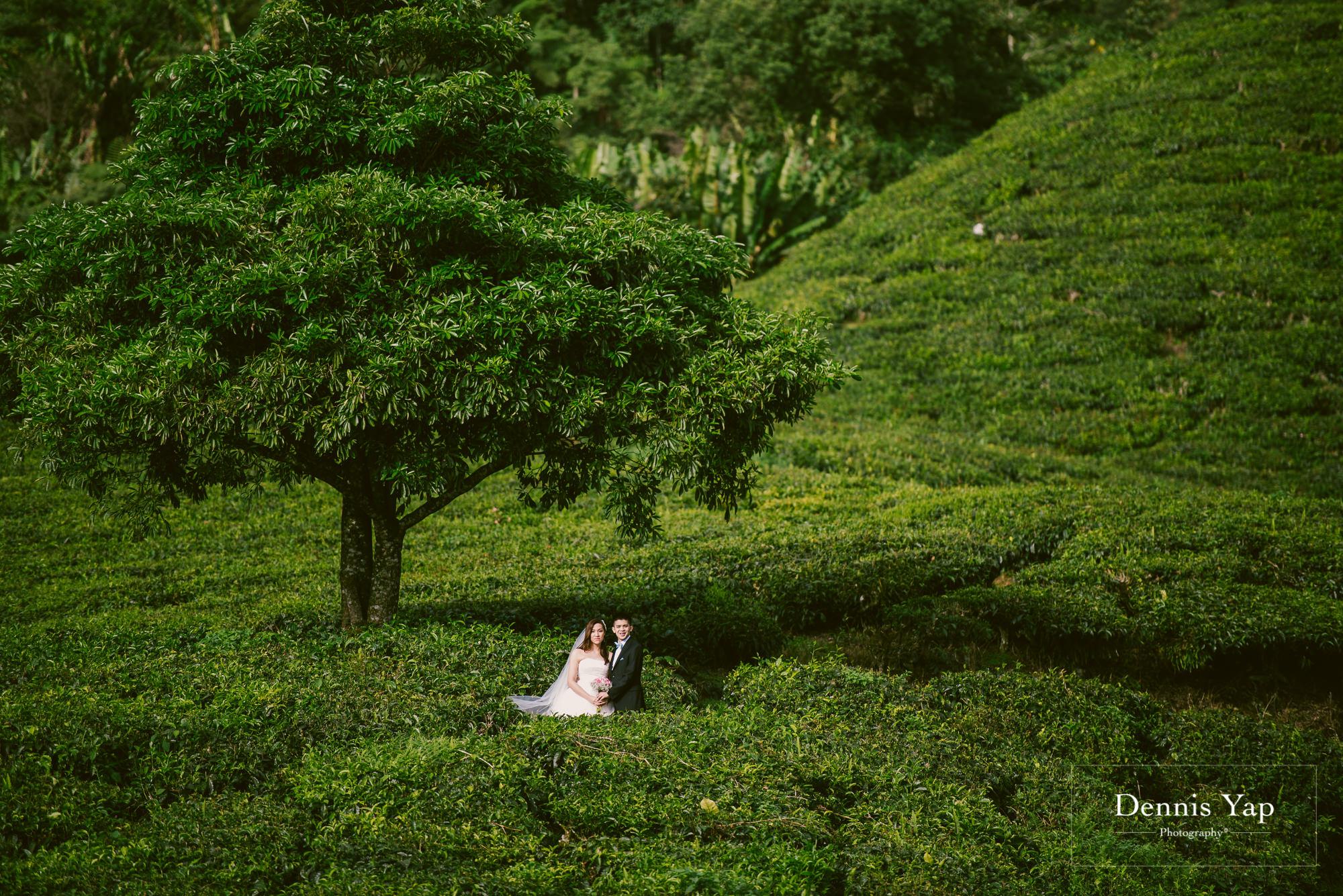 chay xiang alicia pre wedding cameron highland smoke house tea plantation dennis yap photography-6.jpg