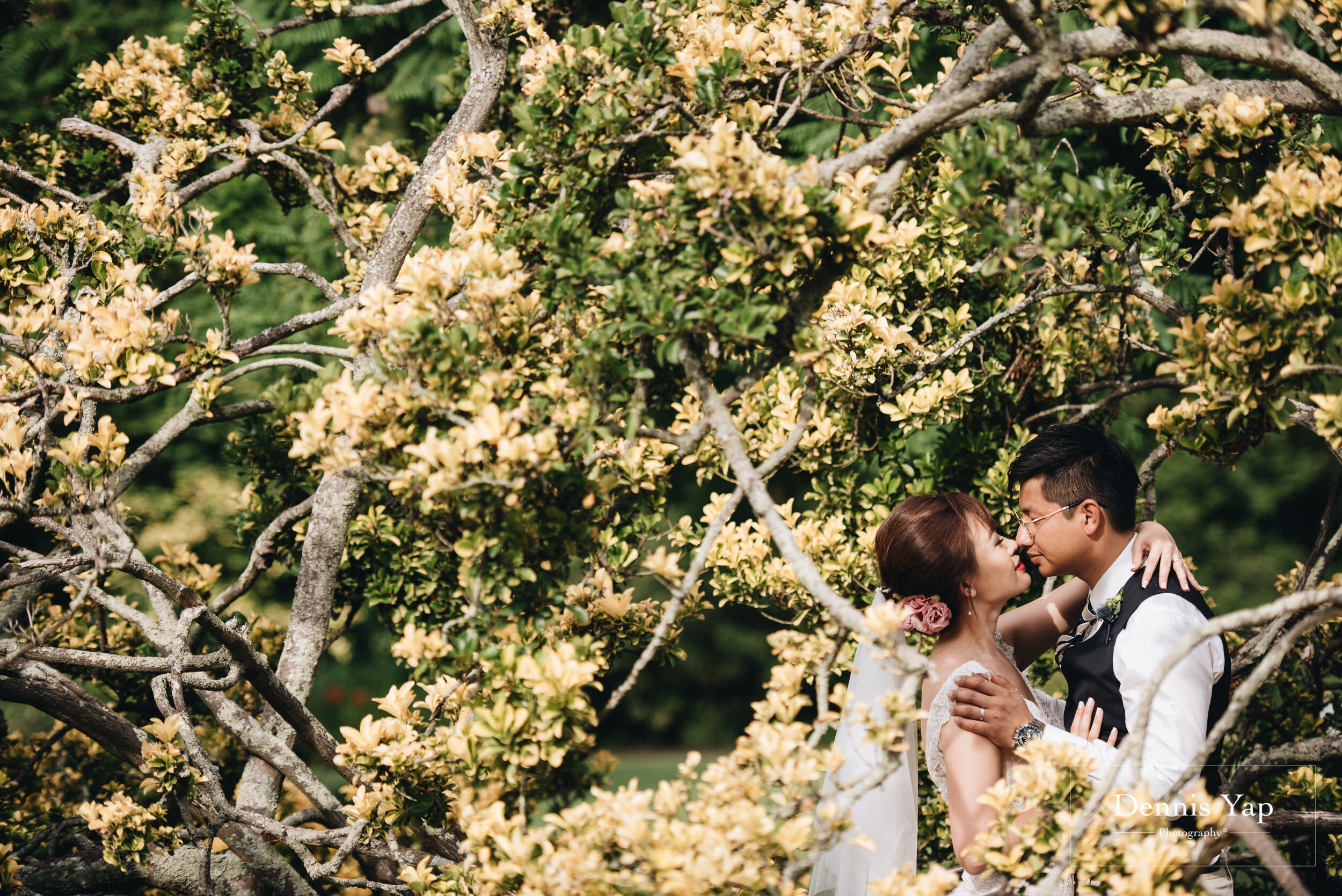 king bella pre wedding melbourne dennis yap photography malaysia top international photographer-14.jpg