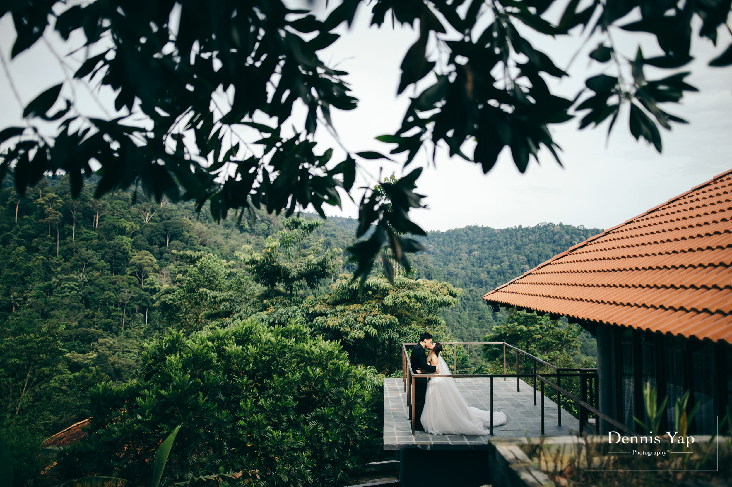 desmond yvonne pre wedding shorea retreat seremban dennis yap photography forest retreat-115.jpg