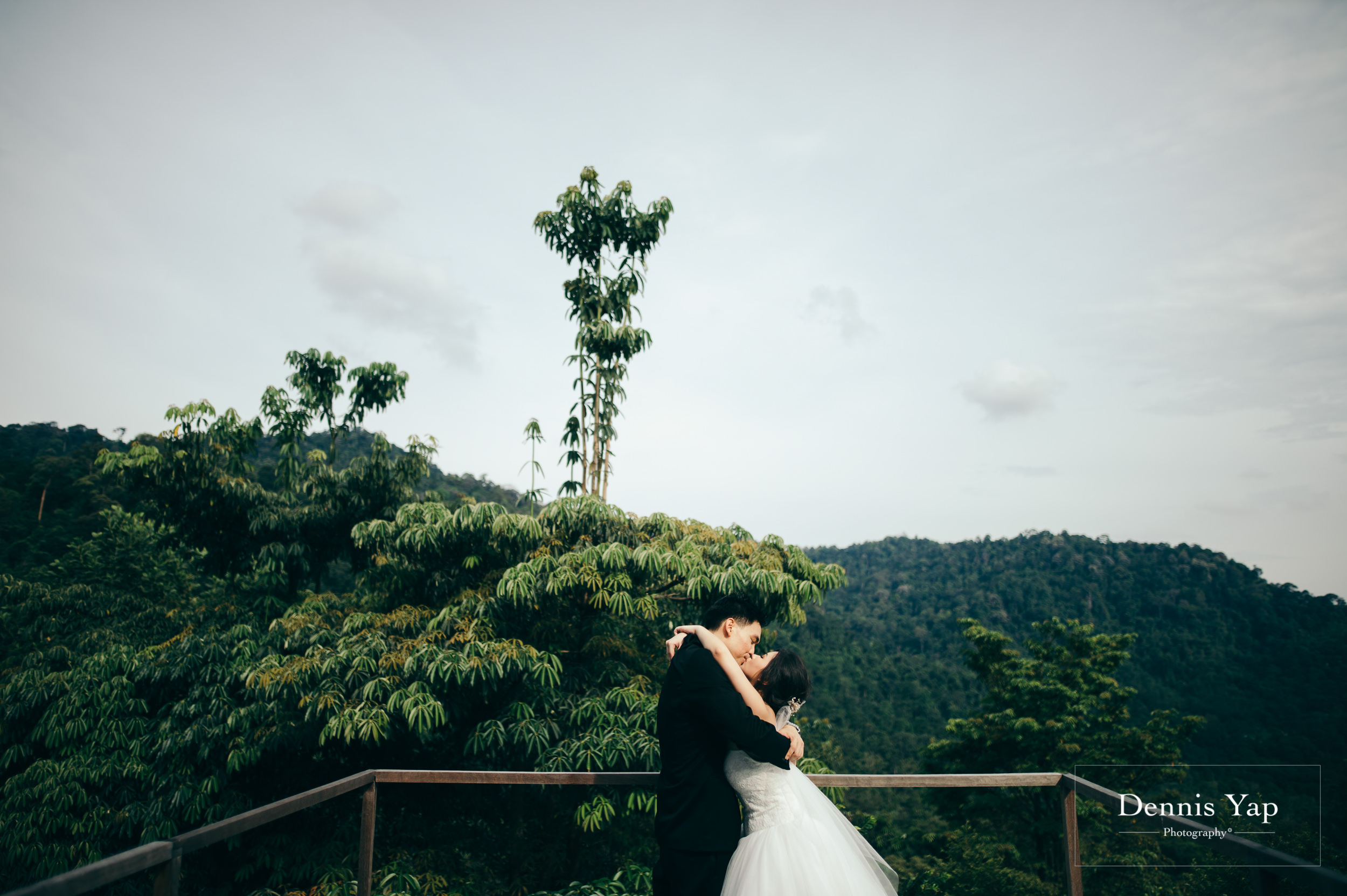 desmond yvonne pre wedding shorea retreat seremban dennis yap photography forest retreat-116.jpg