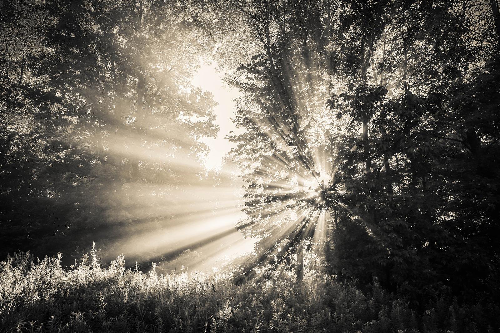 sunrise_blog_3.jpg